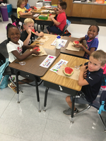 First Grade Science Investigations